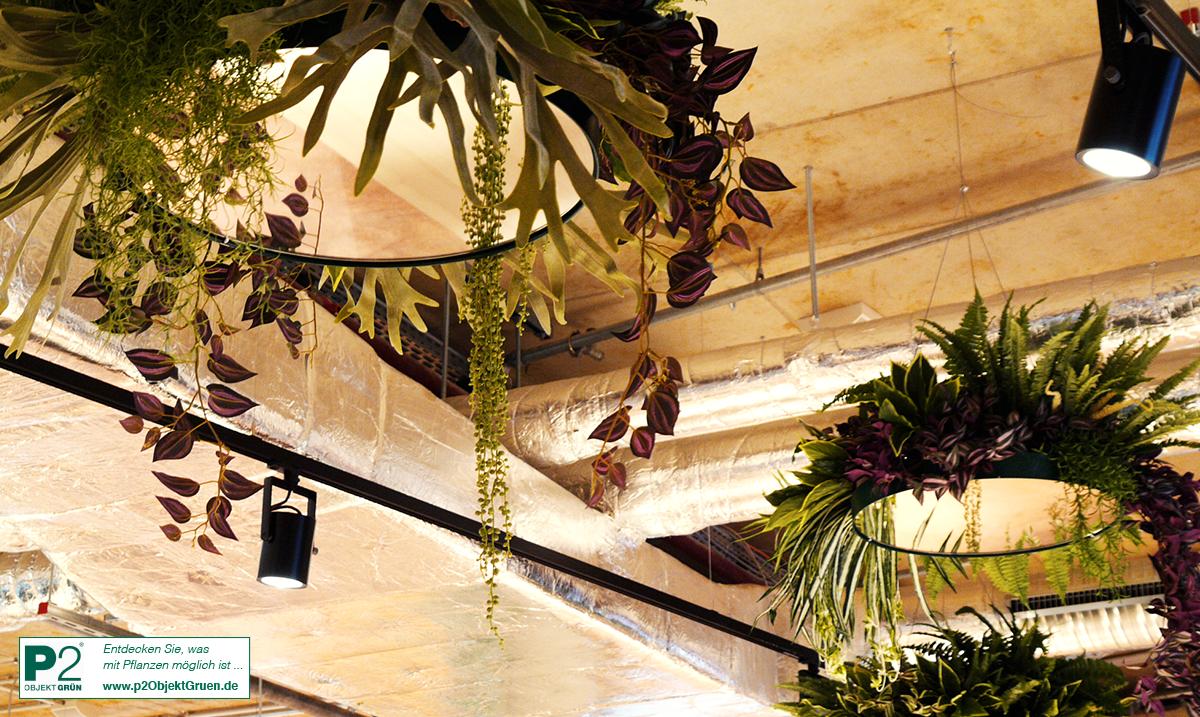 Kantini Bikini - Begrünung und Design mit Kunstpflanzen