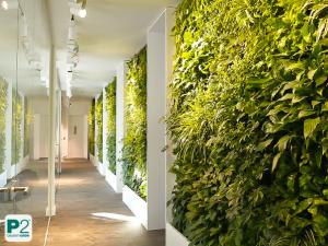 Gestaltung Wandgarten, horizontale Begrünung