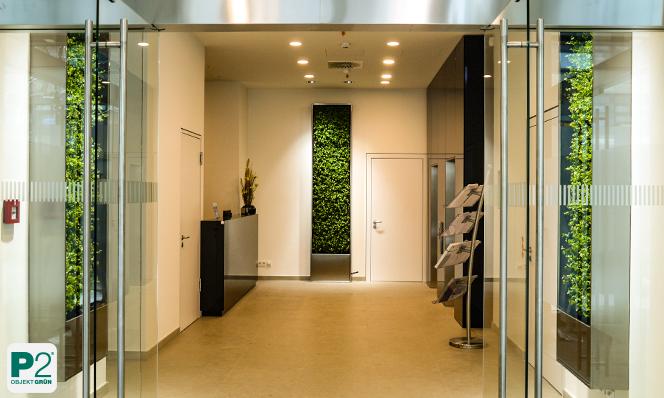 warum m ssen heute die pflanzen an der wand wachsen p2. Black Bedroom Furniture Sets. Home Design Ideas