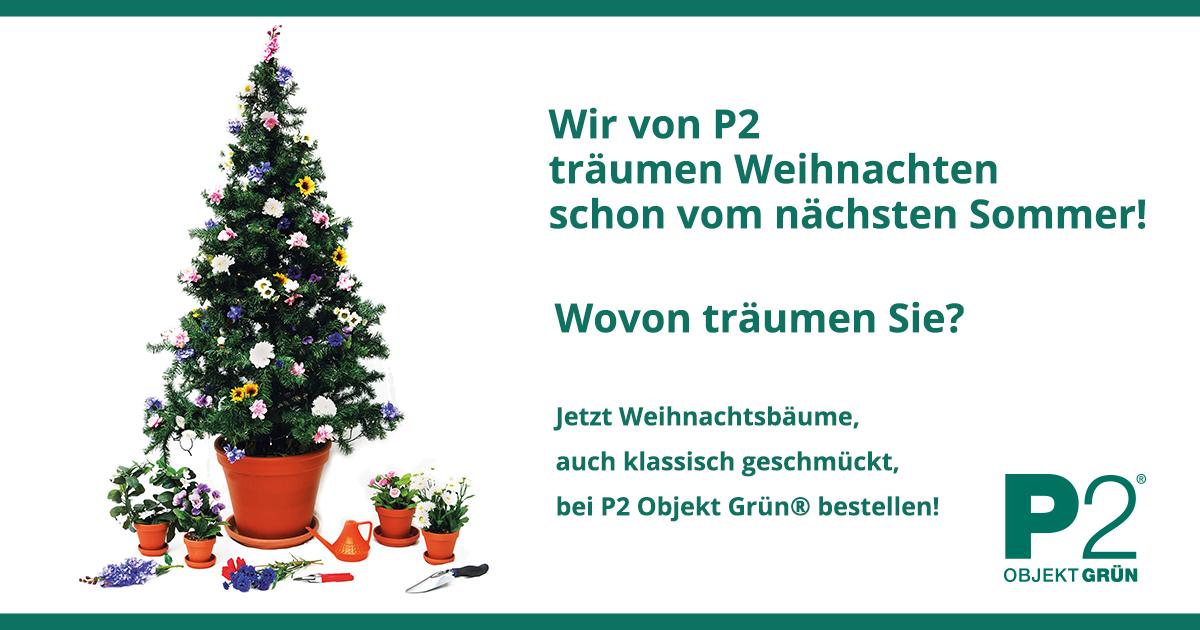 weihnachtsbaum service berlin anliefern schm cken. Black Bedroom Furniture Sets. Home Design Ideas