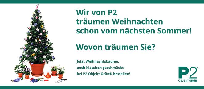 Weihnachtsbaum-Service Berlin: Weihnachtsbaum schmücken lassen
