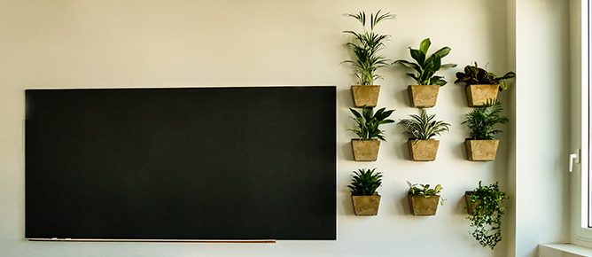 Begrünung Schule Klassenzimmer Wandgarten