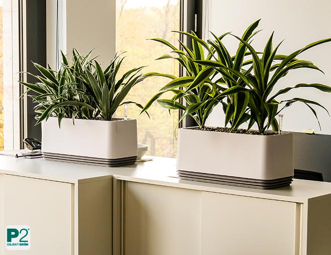 Bessere Luft im Büro - Testen Sie kostenfrei das AIRY-System