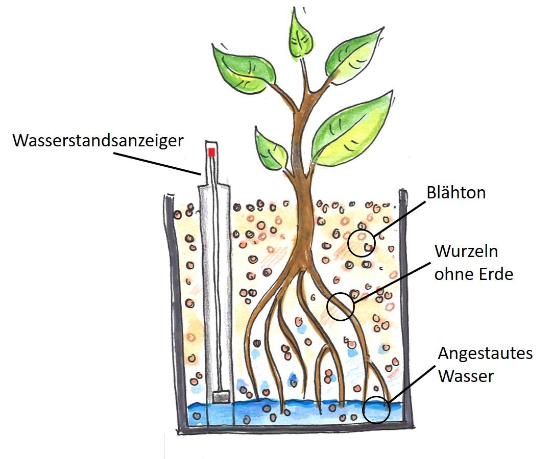 Hydrokultursystem