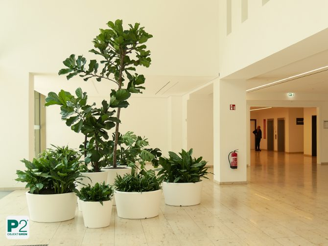 Gestaltung Eingangsbereich Bürokomplex mit grünen Inseln