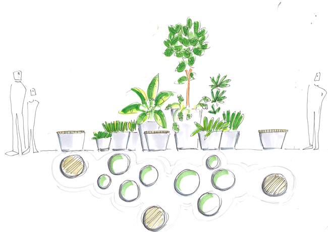 Entwurf Pflanzen Insel