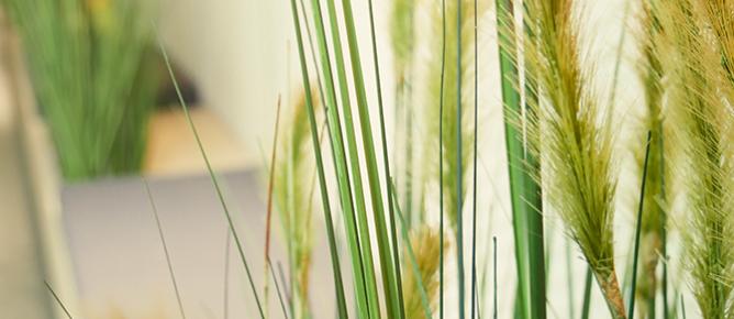 Künstliche Gräser für eine Grasdüne im Eingangsbereich eines Appartements