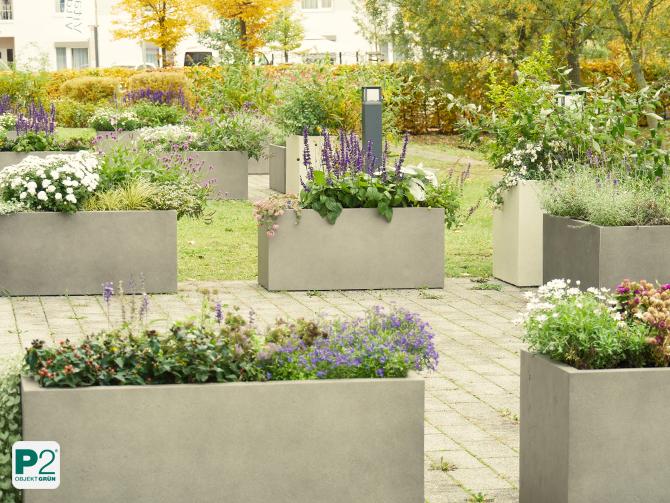 Pflanzenkübel für Terrasse mit insektenfreundlichen Pflanzen