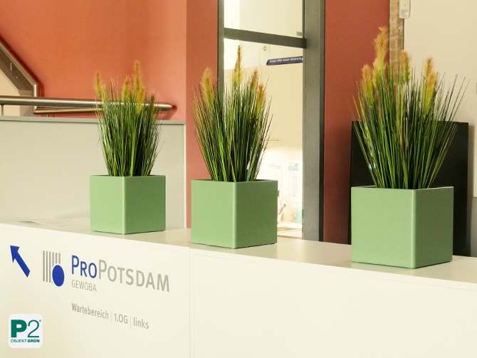 ProPotsdam Pflanzendesign Gebäude