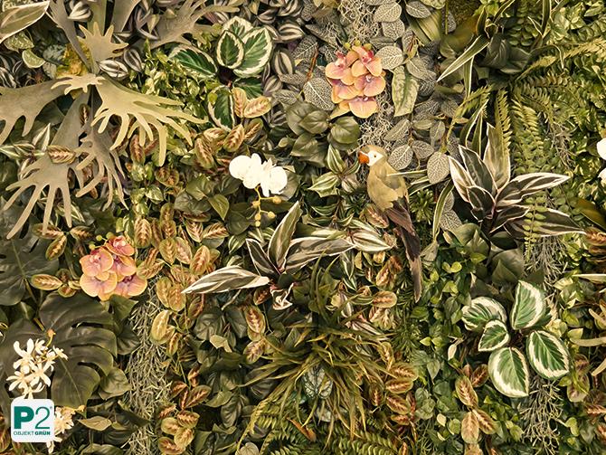 Bilder aus Pflanzen bestellen