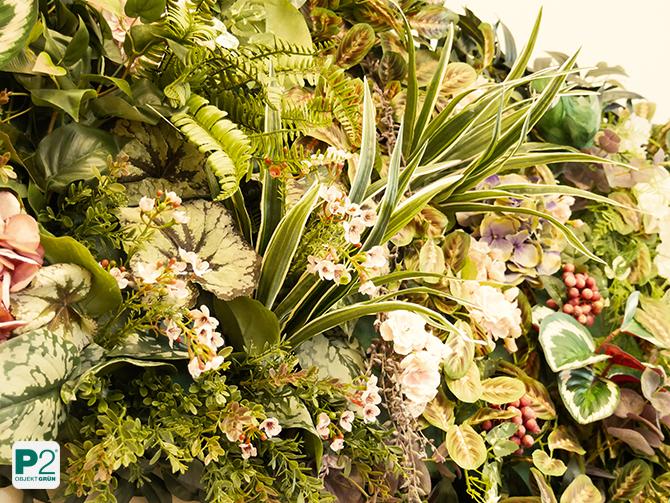 Pflanzenbild mit Blüten und Früchten