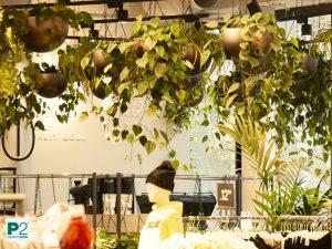 Pflanzen an der Decke Verkaufsfläche