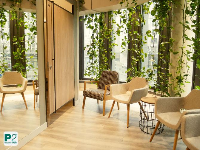Pflanzenvorhang Bereich Umkleidekabinen