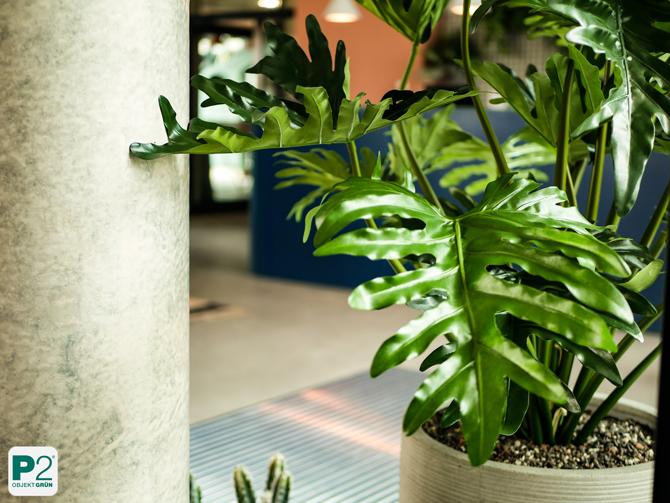 Kunstpflanzen Begrünung