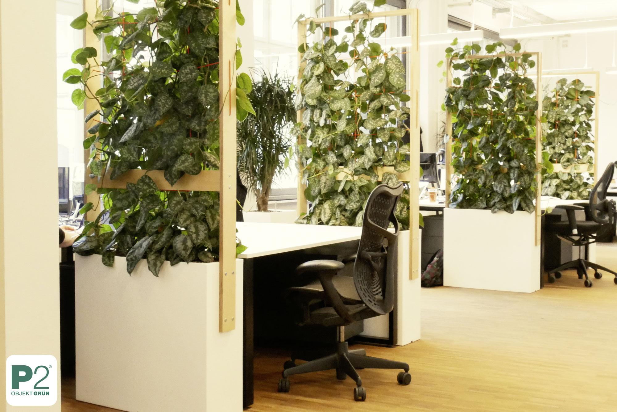 Arbeitsplatzschutz Corona, Teiler mit Pflanzen