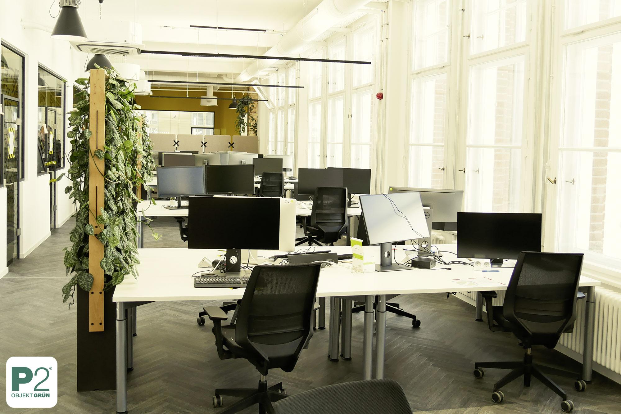 Pflanzen als Raumteiler