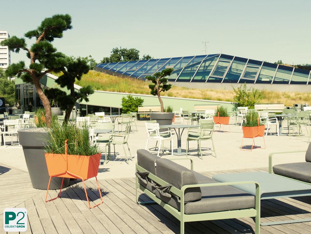 Bikini Berlin Terrasse wetterfeste Pflanzen