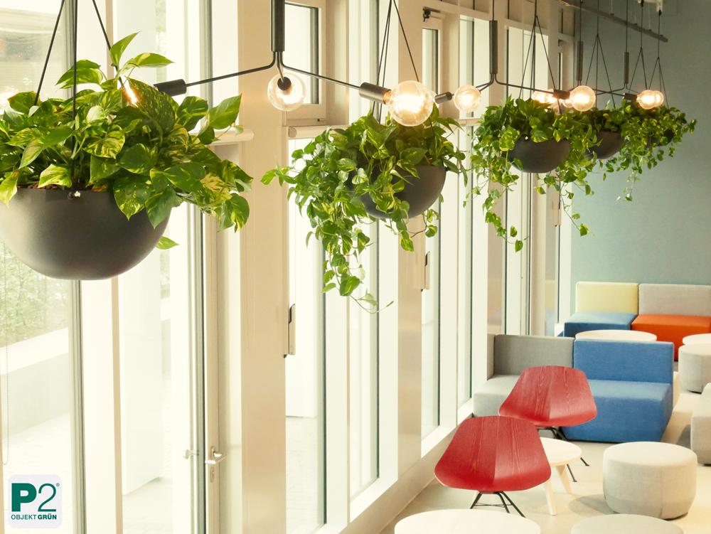 Pflanzendesign Bürogebäude MY.B